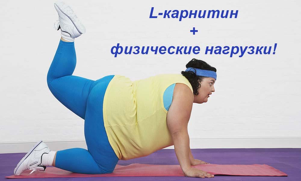 Поможет ли карнитин похудеть