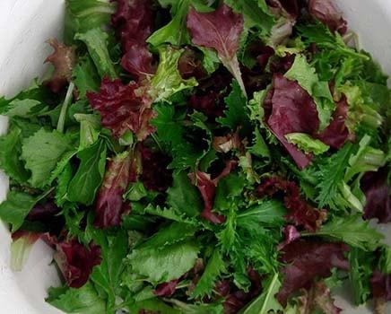 салат-мимоза-с-крабовыми-палочками-рецепт-3