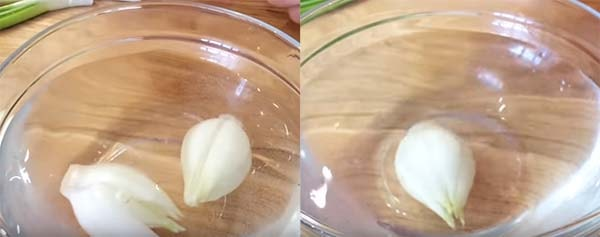 салат-подснежник-с-сыром-и-зеленью-14