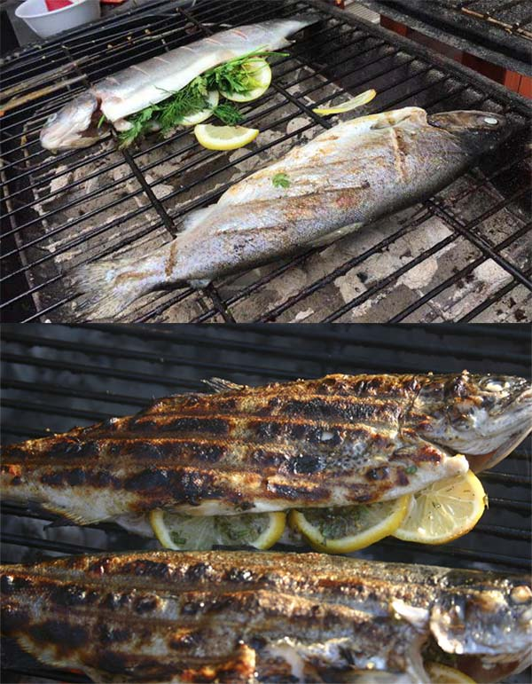 шашлык-из-рыбы-форели-8