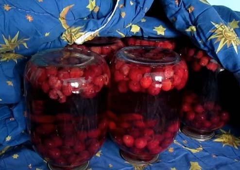 компот-из-вишни-и-малины-8
