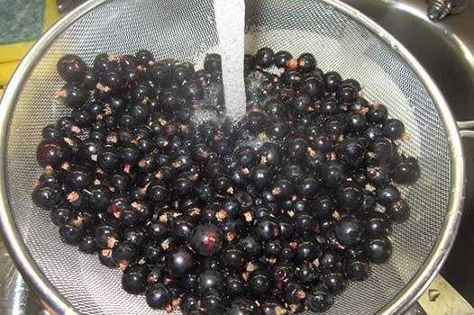 вишневый-компот-с-черной-смородиной-1