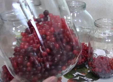 вишневый-компот-с-красной-смородиной-2