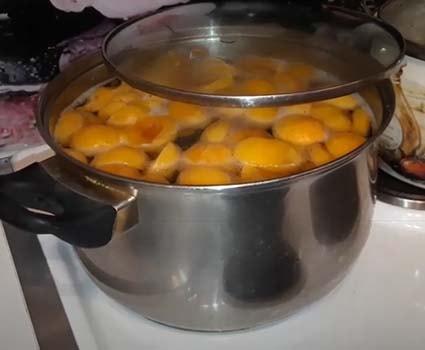 абрикосовый-компот-1