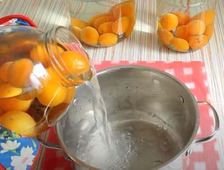 компот-из-абрикосов-с-косточками-3