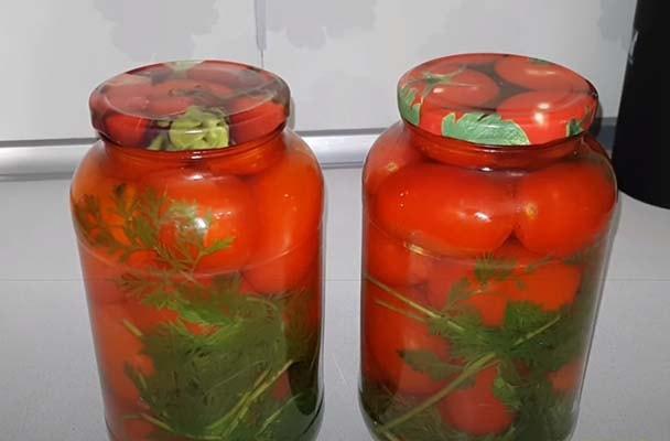 помидоры-с-морковной-ботвой-6