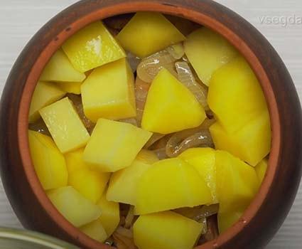 горшочки-в-духовке-с-мясом-и-картошкой-6